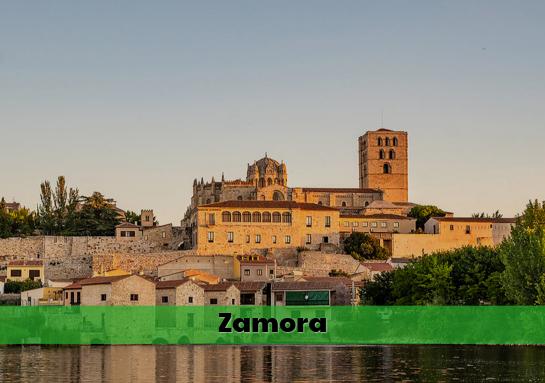 Colegios Mayores Zamora